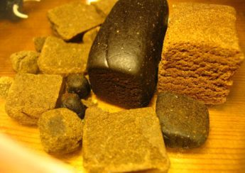 Where can I buy Hash Online