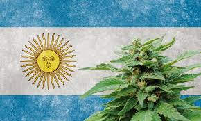 Buy weed in Argentina